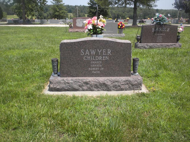 Robert W Sawyer, Sr